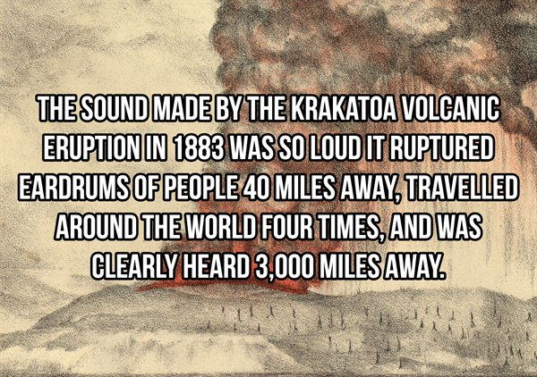 Interesting Facts (19 pics)