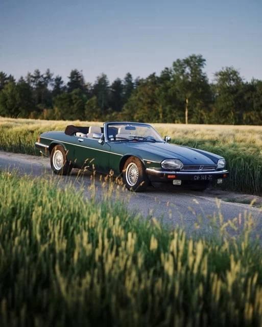 Beautiful Cars (39 pics)