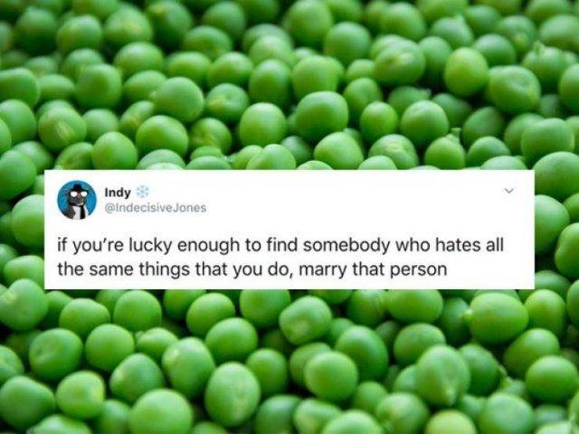 Marriage Tweets (32 pics)