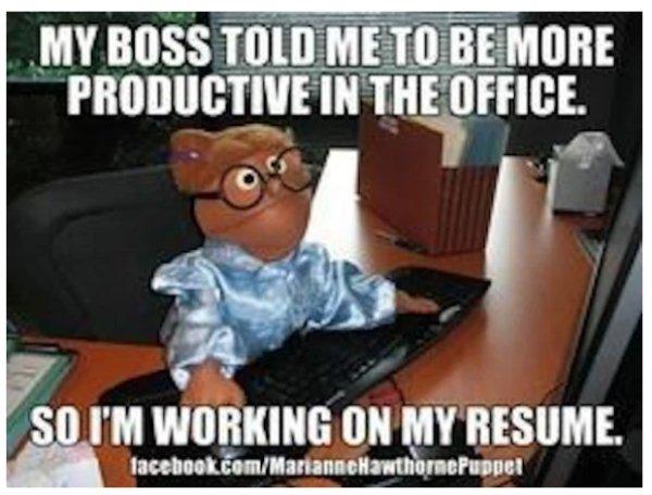Job Memes (32 pics)