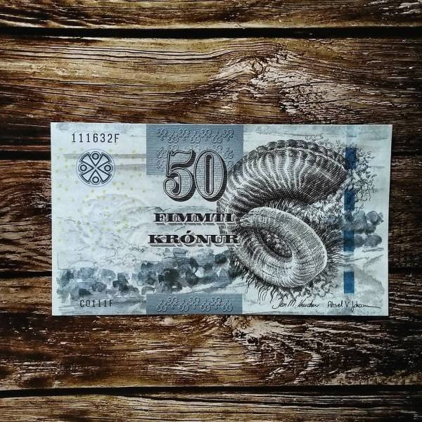Interesting World's Banknotes (15 pics)