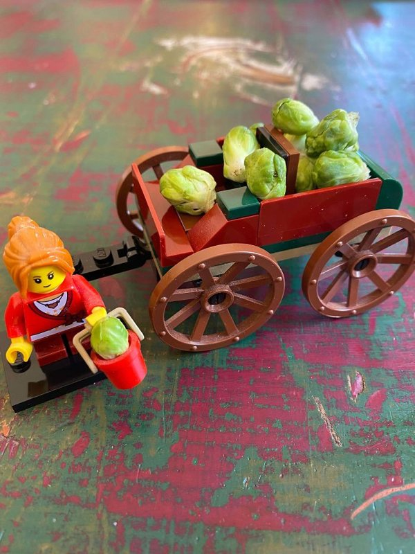 People Show Off Their Tiny Harvests (29 pics)