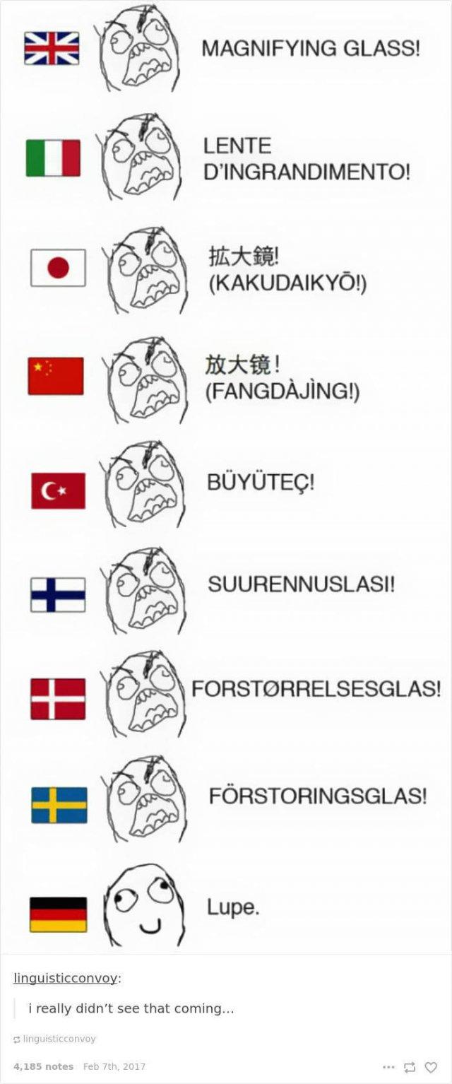 German Language Memes (50 pics)