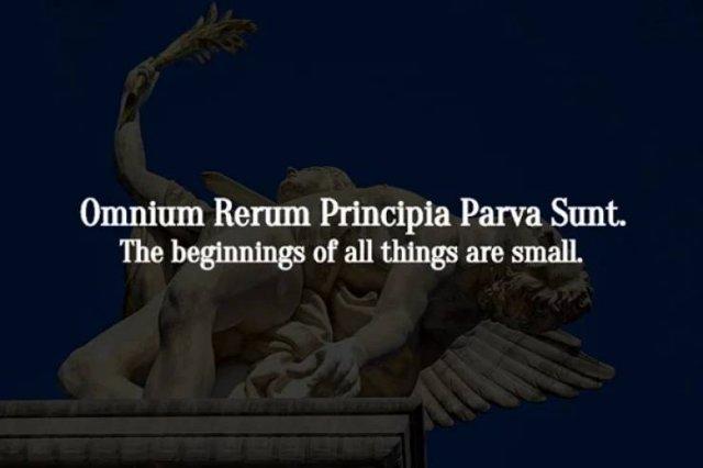 Latin Phrases Full Of Wisdom (17 pics)