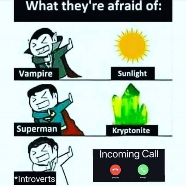 Introvert Memes (22 pics)