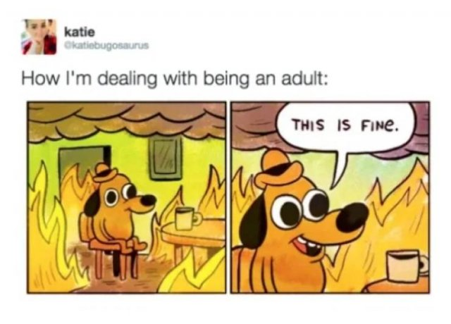 Truth About Being An Adult (31 pics)