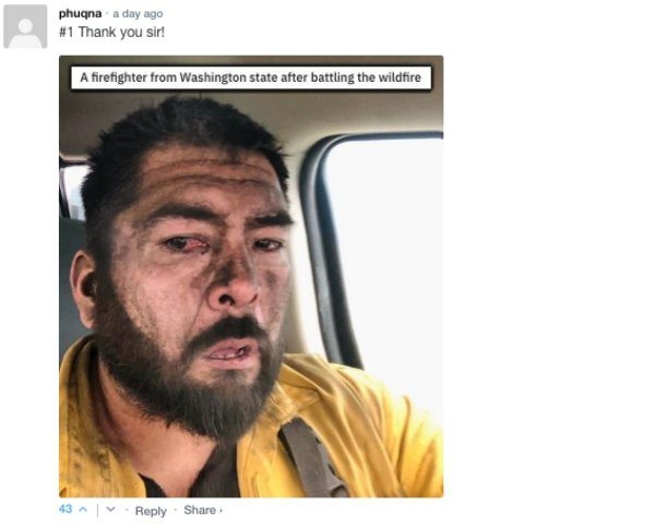 Sarcastic Comments (73 pics)