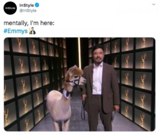 'Emmy' Memes (25 pics)