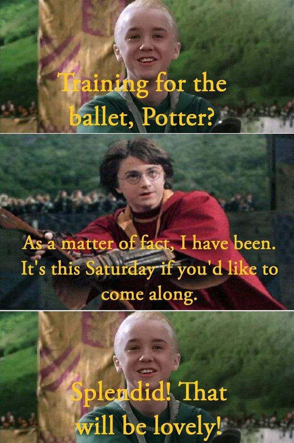 Harry Potter Memes (34 pics)