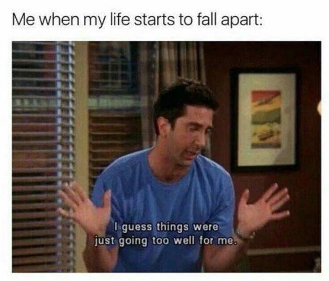 'Friends' Memes (33 pics)