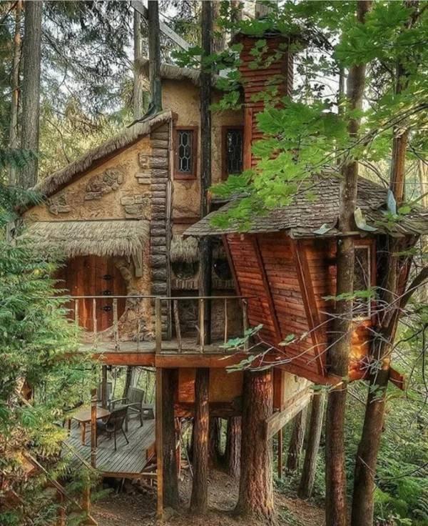 Charming Treehouses (57 pics)