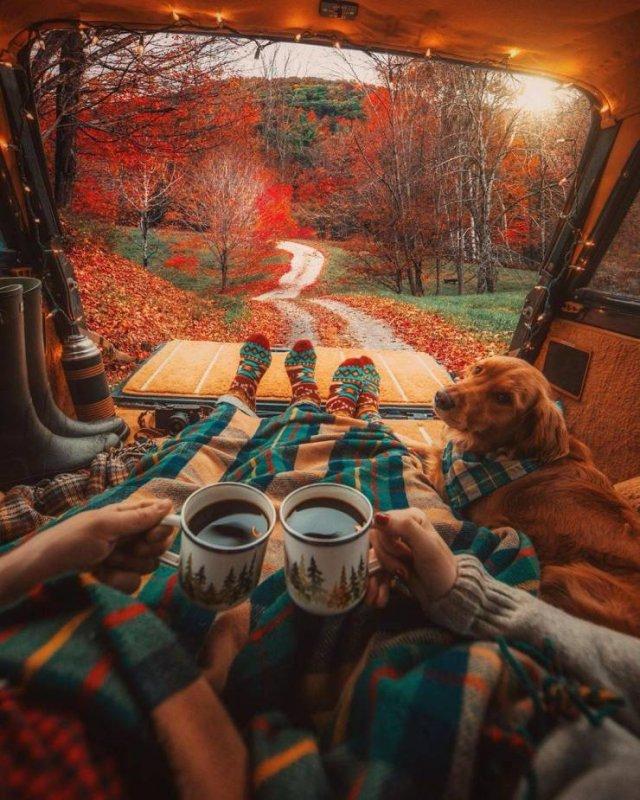 Fantastic Autumn Pictures (37 pics)