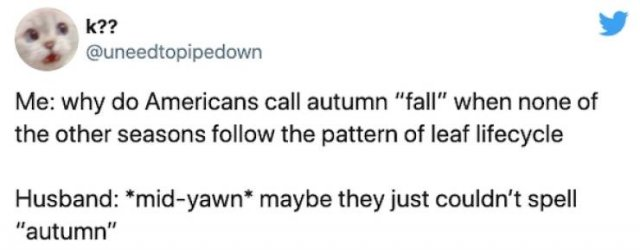 Non-Americans Questions About American Halloween (26 pics)