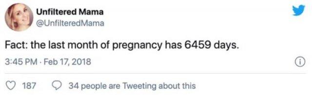 Pregnancy Tweets (38 pics)