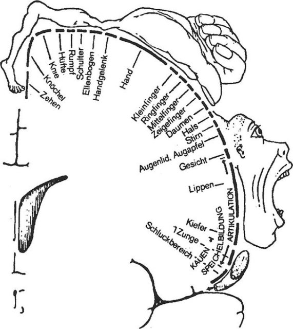 Weird Book Diagrams (40 pics)