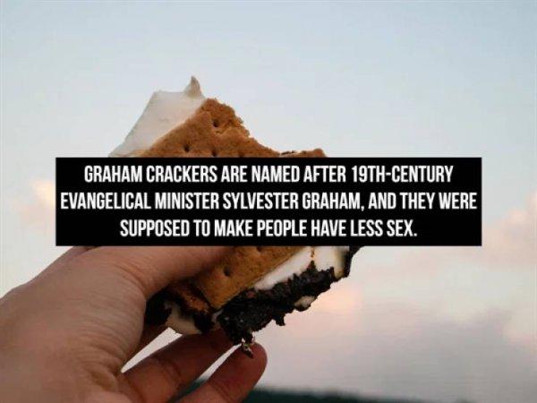 Interesting Facts (16 pics)