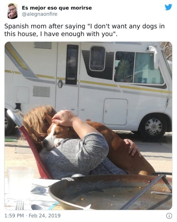 These Moms Refused To Have Dogs (21 pics)
