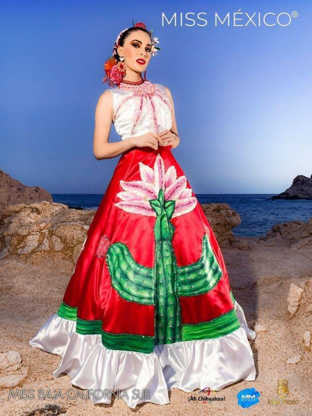 'Miss Mexico 2020' Contestants In National Dresses (32 pics)