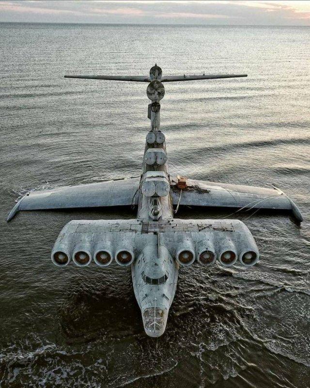 Caspian Sea Monster (19 pics)