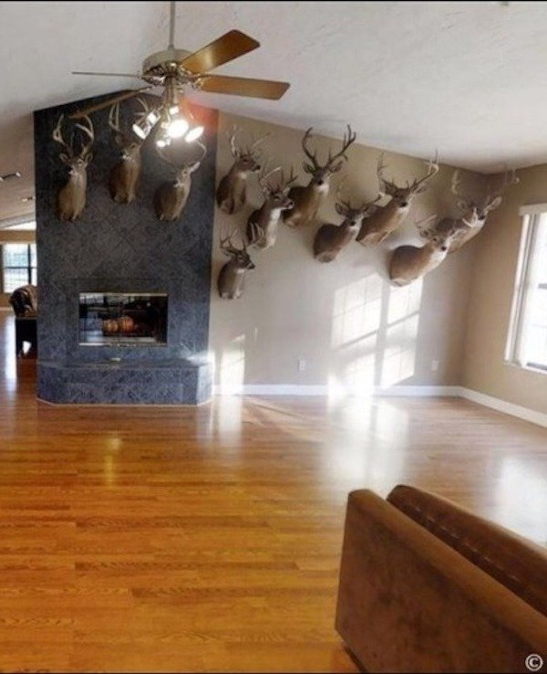 What's Wrong With This Real Estate? (35 pics)