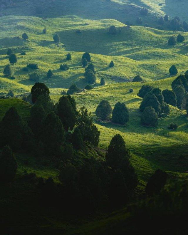 Fantastic Nature (18 pics)