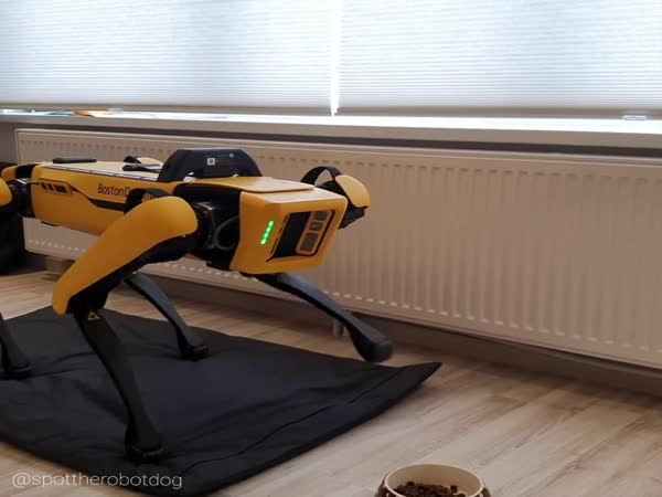 Robot Wants To Eat