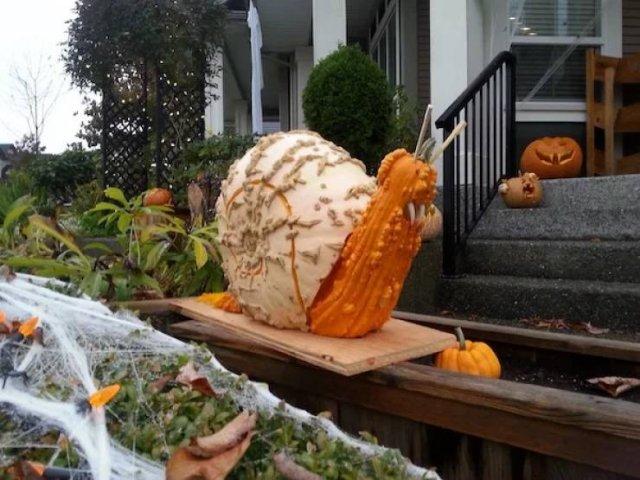 Pumpkin Carving (40 pics)