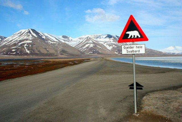 Life In Norway (13 pics)