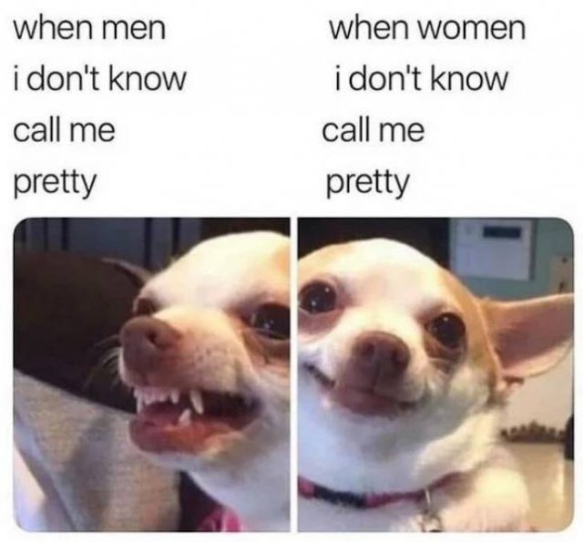 Only Women Will Understand (31 pics)