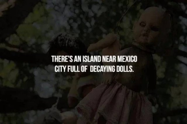 Scary Facts (18 pics)