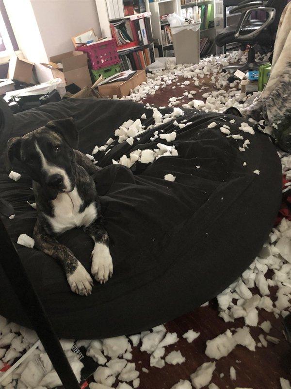 Bad Days Happen (27 pics)