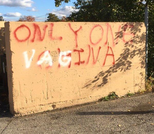 Mild Vandalism (32 pics)