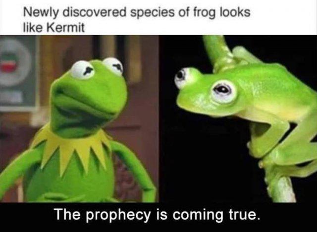 Random Funny Memes (70 pics)