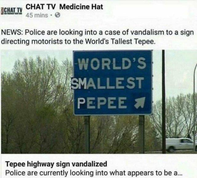 Mild Vandalism (50 pics)