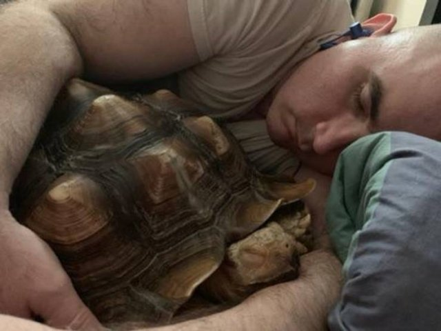 These People Refused To Have Pets (20 pics)