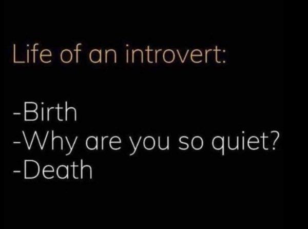 Introvert Memes (29 pics)