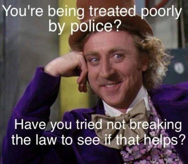 Police Humor (44 pics)