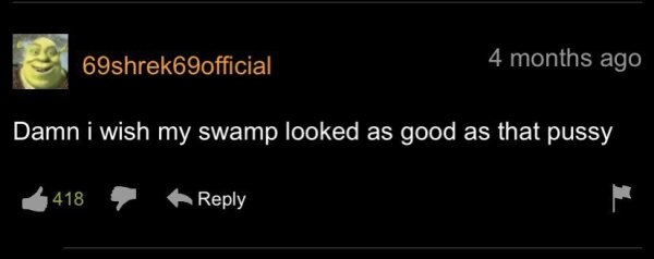 Pornhub Comments (35 pics)