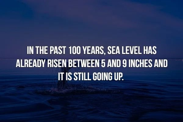 Scary Facts (16 pics)