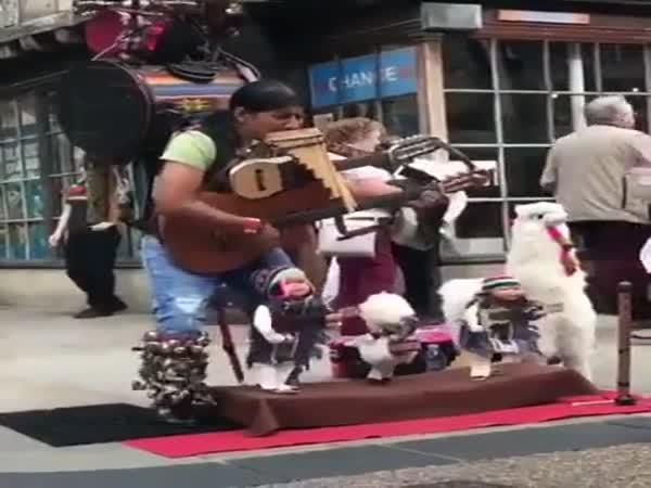 Very Impressive Musical Skills