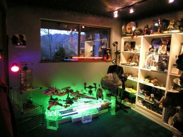 People Show Off Their Collections (49 pics)