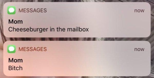 Insane Messages (29 pics)