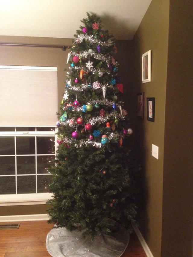 Christmas Trees And Pets (22 pics)