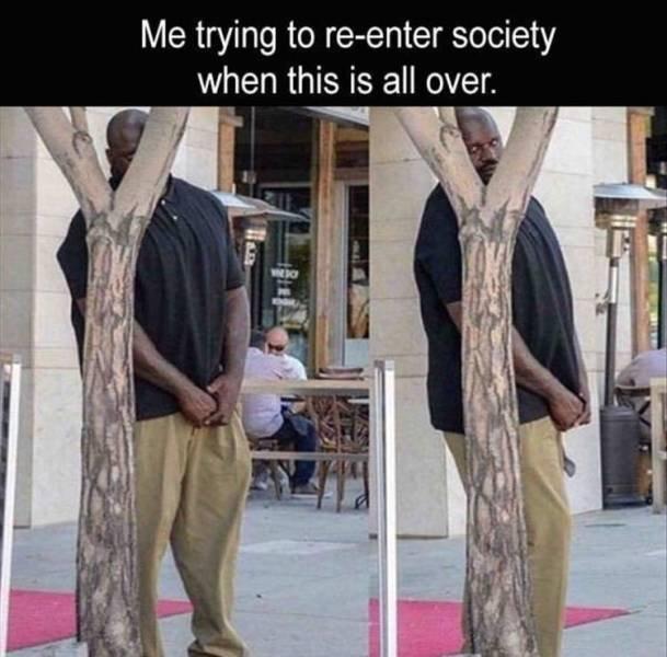Random Funny Memes (78 pics)