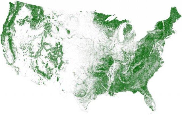 Interesting USA Maps (18 pics)