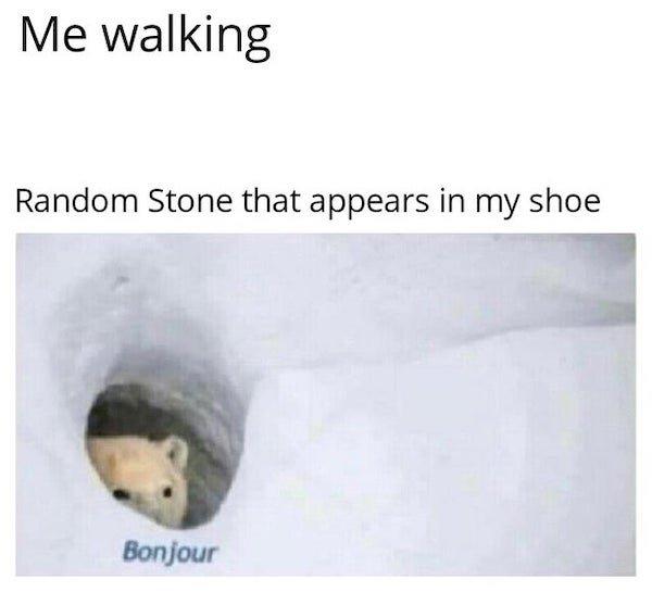 Hilarious Memes (33 pics)