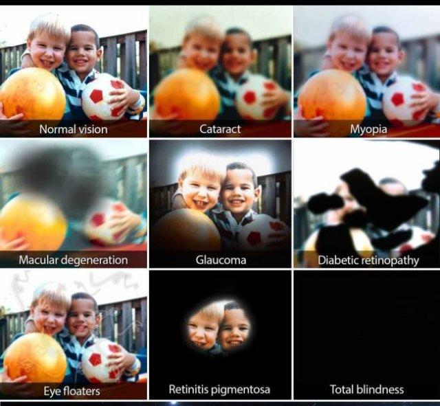 Amazing Pictures (47 pics)