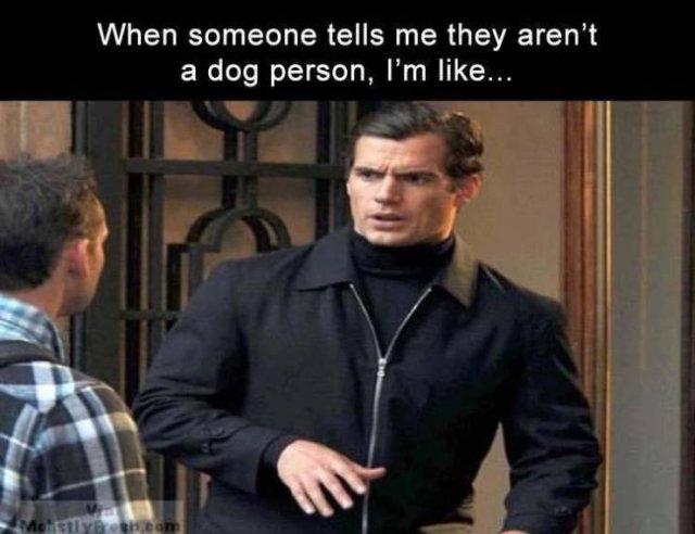 Random Funny Memes (89 pics)