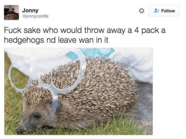 Scottish Tweets (33 pics)