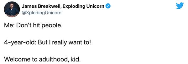 Adulthood Tweets (32 pics)